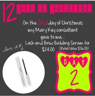 Mary Kay 12 Days of Christmas: Day 2!