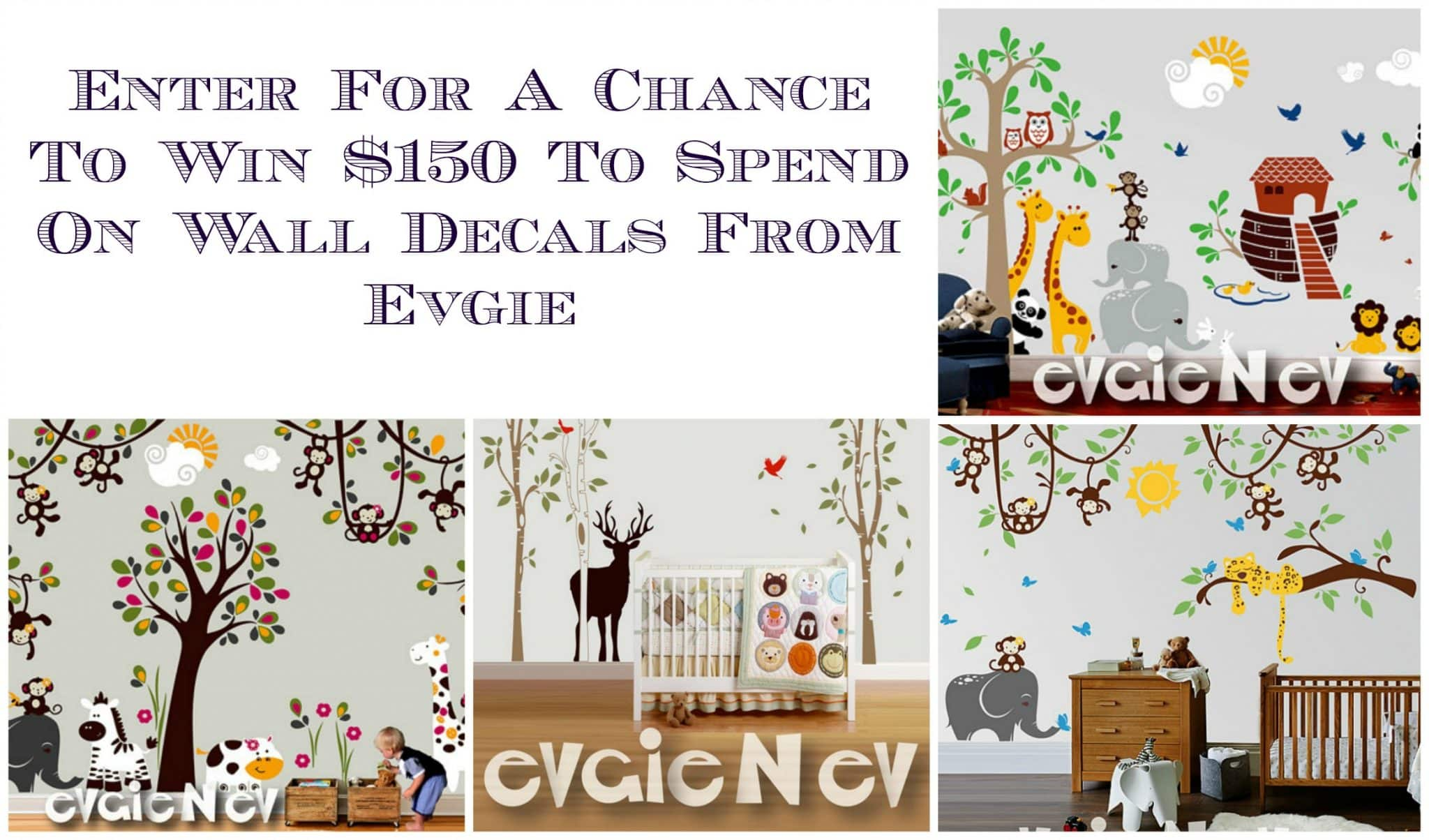 Win $150 to Evgie