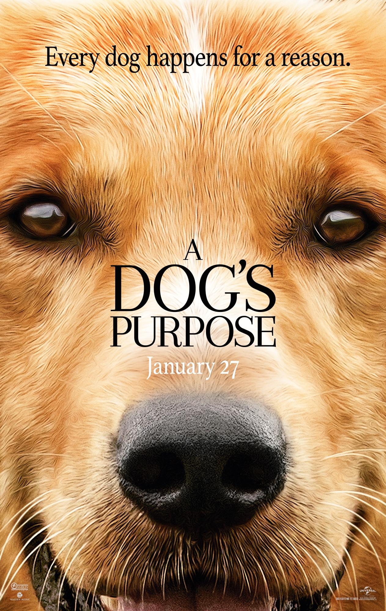A Dog's Purpose Trailer + Movie Detials | ThisNThatwithOlivia.com #ADogsPurpose