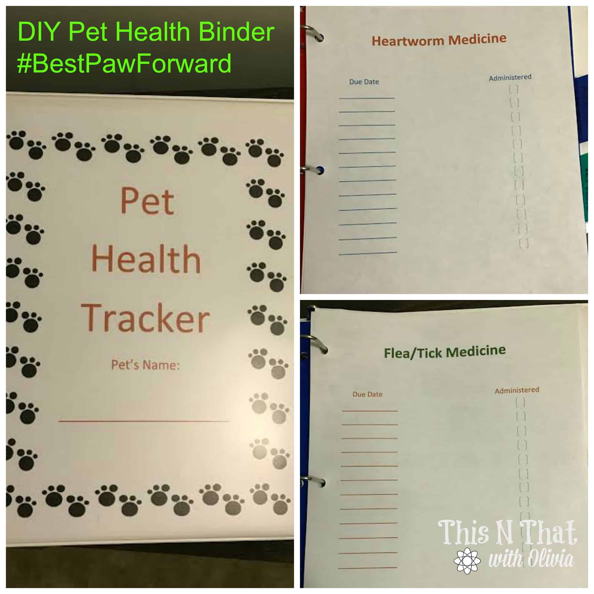 DIY Pet Health Binder #BestPawForward #ad