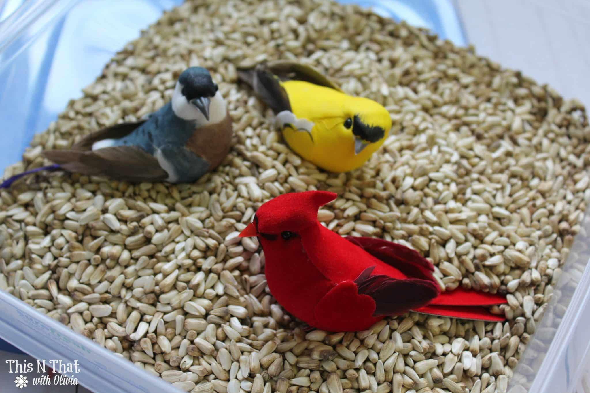 Spring Bird Sensory Bin Craft for Kids