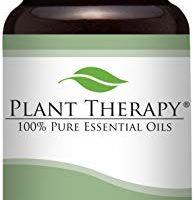 Wintergreen Essential Oil. 10 ml. 100% Pure, Undiluted, Therapeutic Grade.