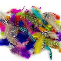 Colorful Craft Feathers